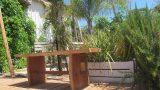 ספסל אקליפטוס
